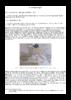 Moyen-âge - application/pdf