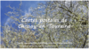 Collection de cartes postales de Chissay V2 - application/pdf